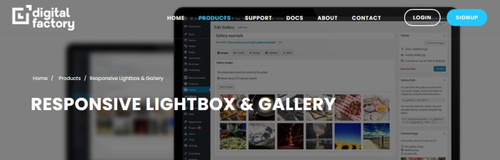 lightbox and gallery