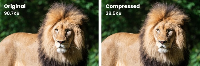 image compression comparison
